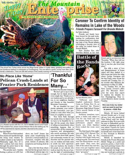 The Mountain Enterprise November 28, 2008 Edition