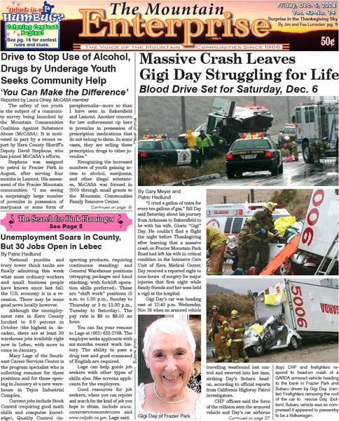 The Mountain Enterprise December 05, 2008 Edition