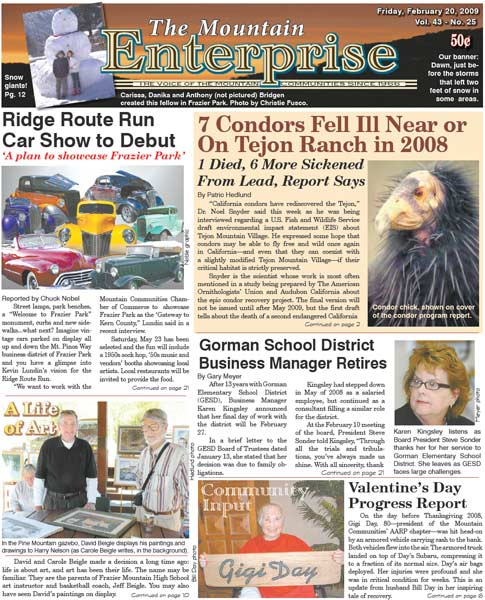 The Mountain Enterprise February 20, 2009 Edition