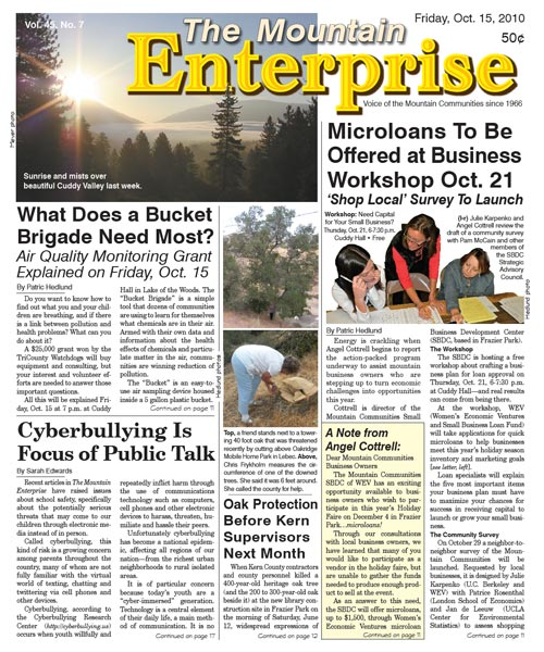 The Mountain Enterprise October 15, 2010 Edition