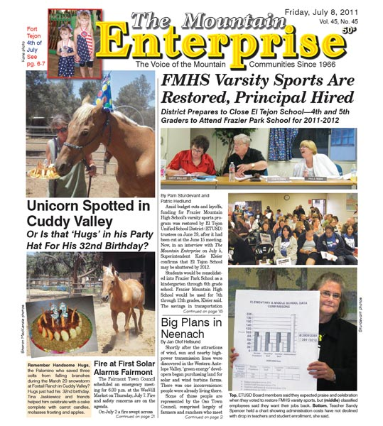 The Mountain Enterprise July 08, 2011 Edition