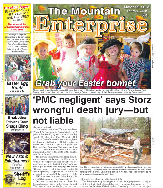 The Mountain Enterprise March 29, 2013 Edition