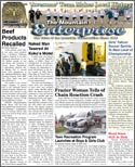 The Mountain Enterprise February 22, 2008 Edition