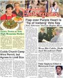 The Mountain Enterprise January 16, 2009 Edition