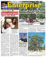 The Mountain Enterprise July 02, 2010 Edition