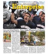 The Mountain Enterprise October 22, 2010 Edition