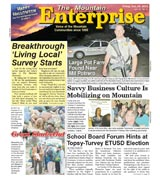 The Mountain Enterprise October 29, 2010 Edition
