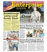 The Mountain Enterprise October 29, 2010 Edition