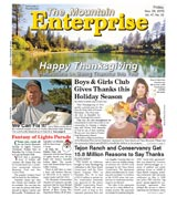 The Mountain Enterprise November 26, 2010 Edition