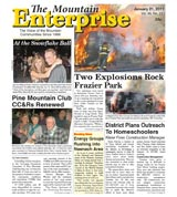 The Mountain Enterprise January 21, 2011 Edition