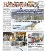 The Mountain Enterprise March 25, 2011 Edition