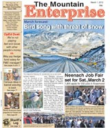 The Mountain Enterprise March 01, 2013 Edition
