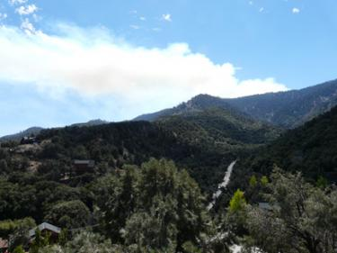 Image of fire from Pine Mountain community by Doug Page at noon.