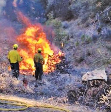 That same day, firefighters were burning wood cleared from fire breaks near the Pine Mountain community.
