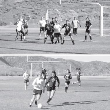 Girls' Falcon Soccer Sprints To Next Level of Championship