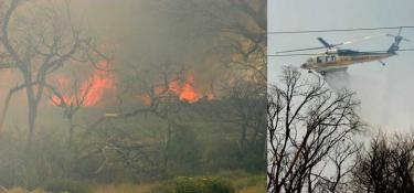 (left) A Gorman wildfire on Sunday, June 28 at about 12:55 p.m. burns through brush just beyond trees which were blackened in a September, 2005 fire. (right) Just minutes later, a Los Angeles County Fire Department helicopter drops water on the flames. [Meyer photos]