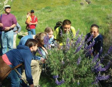 Spring Blossoms With Guided Hikes