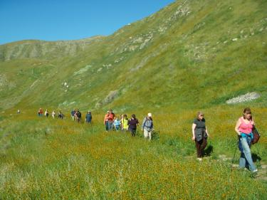 Naturalist for You offers free guided hikes. (Above) Wind Wolves Preserve.