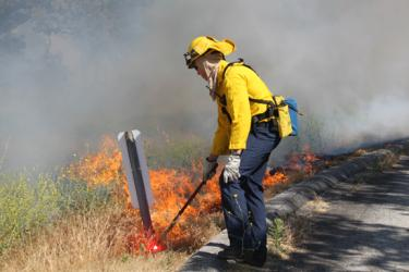 A firefighter lights a backfire on Digier Canyon Road to burn brush back to the fire from I-5 below. [CHP Sgt. Darrell Brooks photo]