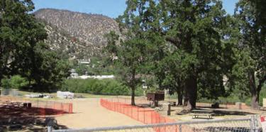 New fencing protects heritage oak trees in Frazier Mountain Park from Tilton Pacific Construction building activities and staging for new branch library. This photo was taken Friday, July 2, after newspaper reports and community groups objected to token fences.