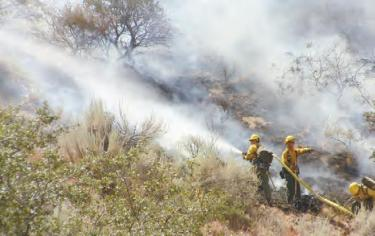 Wildfire: 175 Homes Asked to Evacuate in Lebec