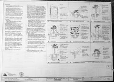 This document, titled LPD-1 details instructions from the architect, CWA, AIA Inc., about the tree fences required at the library construction site to protect and preserve Frazier Park's heritage oak trees. These tasks are included in the project contract for which Kern county agreed to pay Tilton Pacific Construction over $4 million.