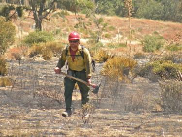 Above: Hotshot assigned to Post fire mop-up coming off the steep slopes above O'Neill Canyon as funnels of white smoke continued to curl through the trees. [Hedlund photo]