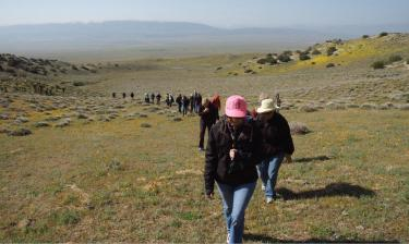 Sign up for 2011 hikes at www.tejonconservancy.org