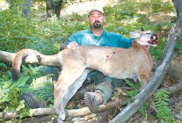Bron Sanders is still listed on some of Tejon Ranch Company's web pages as a hunting guide in their sports hunting program. He has sued the corporation, alleging ranch operations managers engage in illegal mountain lion poaching, making it a requirement of some employees' jobs. Sanders is suing for lost wages and damages after being fired following, he says, a protest to the illegal activities. [Gayer photo]