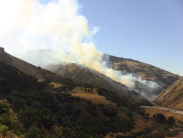 'Grape Fire' North of Fort Tejon along Grapevine Is Out
