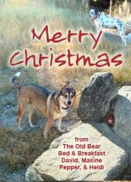 Maxine and David Stenstrom of the Old Bear Bed and Breakfast, along with four-footed elves Pepper and Heidi send greetings.