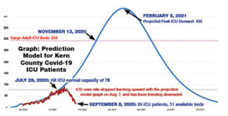 [Kern County Public Health Department graph of ICU bed capacity.]