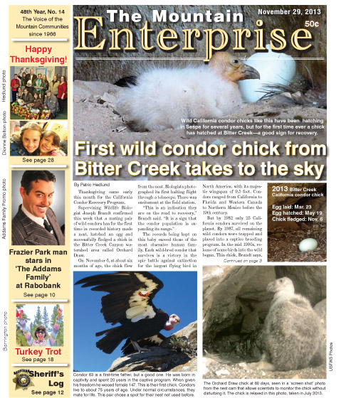 The Mountain Enterprise November 29, 2013 Edition