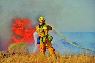 An L.A. County firefighter knocks down Powerhouse fire flames. [photo by Gunnar Kuepper]