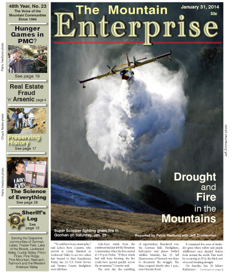 The Mountain Enterprise January 31, 2014 Edition