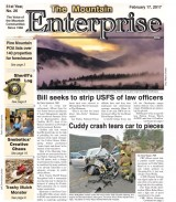 The Mountain Enterprise February 17, 2017 Edition