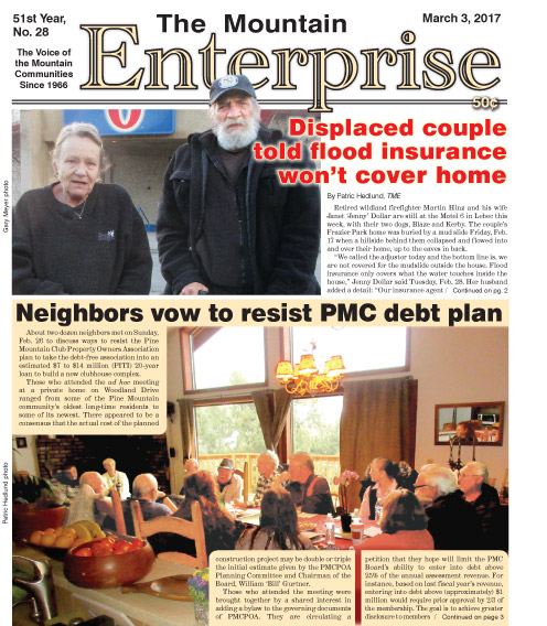 The Mountain Enterprise March 3, 2017 Edition