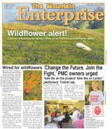 The Mountain Enterprise March 17, 2017 Edition