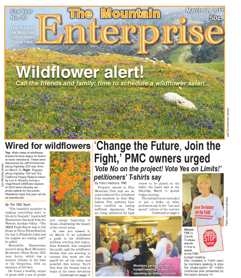The Mountain Enterprise March 17, 2017 Edition