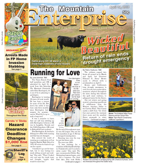 The Mountain Enterprise April 14, 2017 Edition