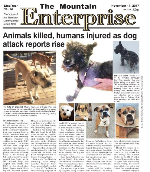 The Mountain Enterprise November 17, 2017 Edition
