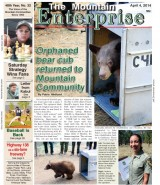 The Mountain Enterprise April 4, 2014 Edition