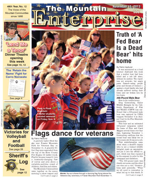 The Mountain Enterprise November 15, 2013 Edition