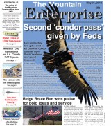 The Mountain Enterprise May 31, 2013 Edition