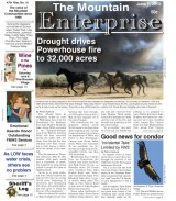The Mountain Enterprise June 7, 2013 Edition