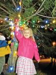 Craft Fair and Christmas Trees