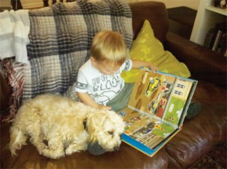 Young Adam gets a headstart on reading with therapy dog Ginger Snap.