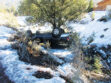Icy curve in PMC flips car off roadway