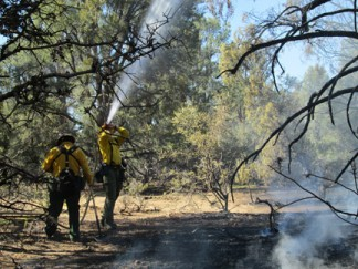Los Padres National Forest firefighters from the Mt. Pinos Ranger District wet down the trees at the scene of the fire near Mill Canyon Road. [photo by Gary Meyer]