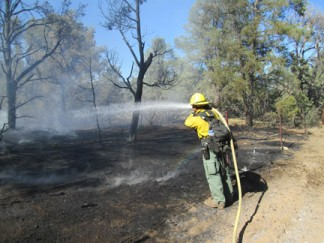 A Los Padres National Forest firefighter from the Mt. Pinos Ranger District wets down the charred ground at the scene of the fire. [photo by Gary Meyer]